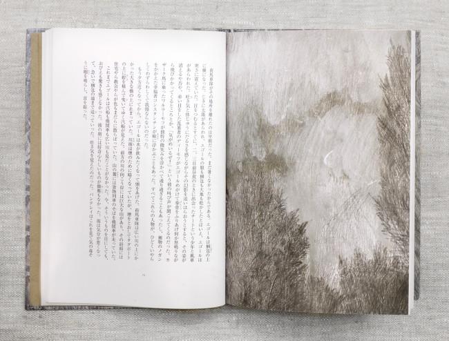 Антон Чехов. Степь.  Перевод Накамура Ешиказу. Токио: Издательство Мичитани. 2011