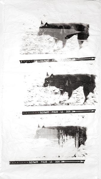 Собака III. 130×70 см