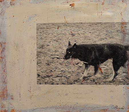 Собака IV. 70×100 см