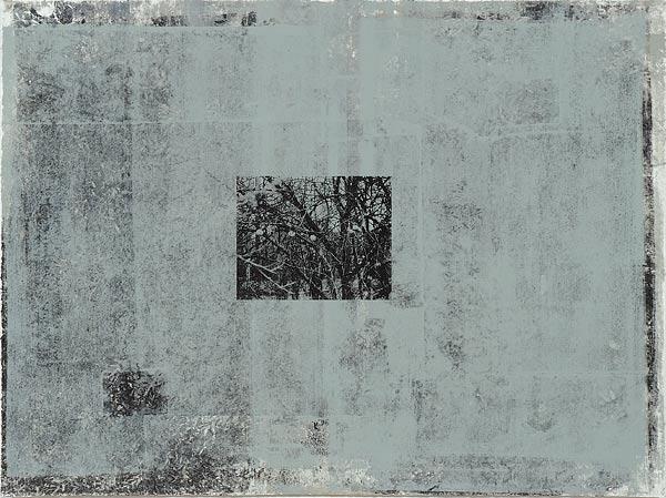 Куст V. 70×90 см