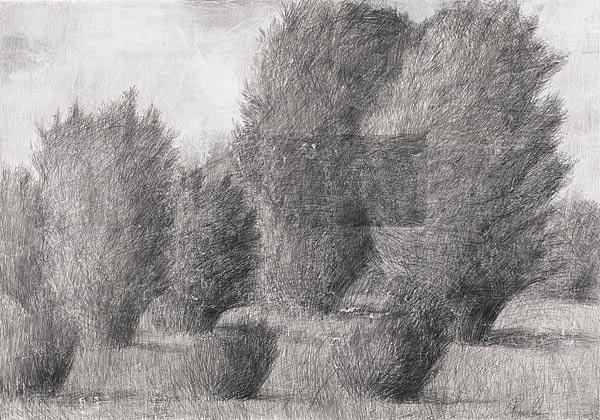 Куст II. 70×100 см