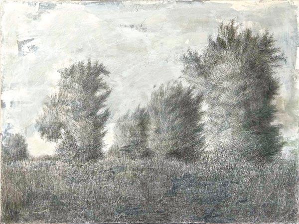 Куст IV. 70×100 см